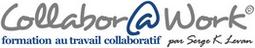 Icon_logoCollaboratWork